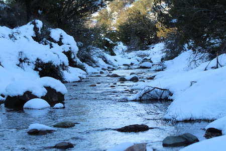 A frozen river flowing in the forest with the ground covered with snow