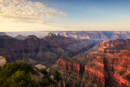 Foto de Morning light at Gran Canyon North rim view point trail. - Imagen libre de derechos