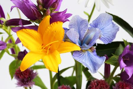 Photo pour a bouquet of different wild field and garden flowers: bell, lily, chives, iris - image libre de droit