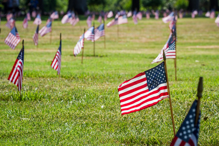 rows of flags on each grave of a Veterans Cemetery in Florida for Veterans day