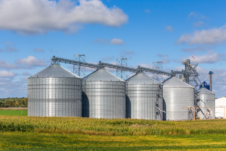 Foto de Five round metal grain elevator bins in corn fileld in the United States. - Imagen libre de derechos
