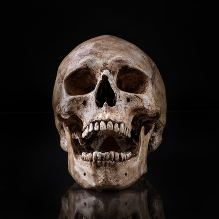 Photo pour frontview of human skull open mouth reflect on isolated black background - image libre de droit