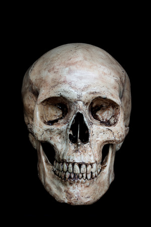 Photo pour Front side view of human skull on isolated black background - image libre de droit