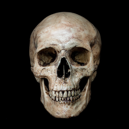 Photo for Front side view of human skull on isolated black background - Royalty Free Image