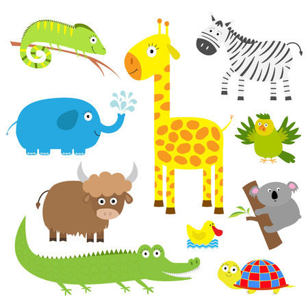 Illustration pour Cute animal set. Baby background. Koala, alligator giraffe, iguana zebra, yak turtle, elephant, duck and parrot. Flat design Vector illustration - image libre de droit