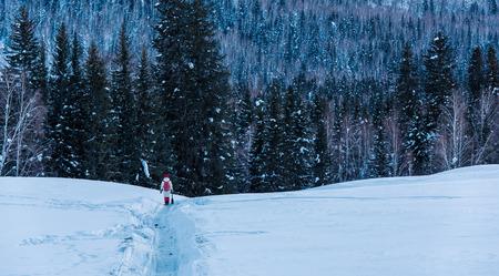 Foto de Xinjiang snow view - Imagen libre de derechos