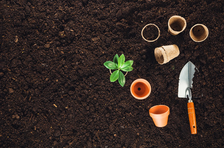 Photo for Gardening tools on fertile soil texture background seen from above, top view. Gardening or planting concept. Working in the spring garden. - Royalty Free Image