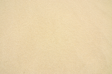 Photo for Sand Texture Background, Beach, Summer, Seamless - Royalty Free Image
