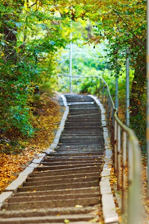 Photo pour Stairs going uphill in a peaceful forest in autumn - image libre de droit