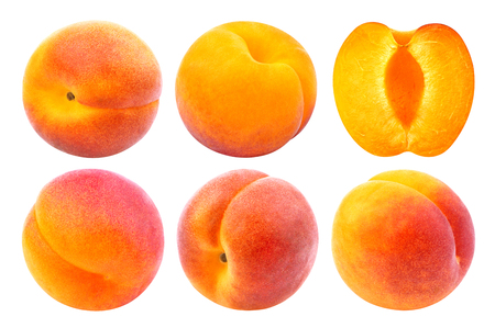 Photo for Apricot isolated. Collection of whole and cut apricots isolated on white background with clipping path - Royalty Free Image