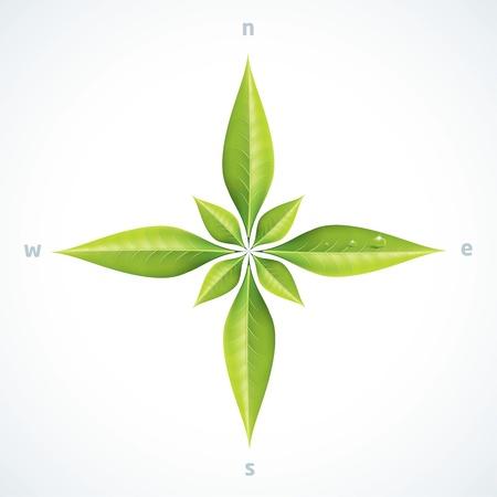 Ilustración de Eco green leafs compass rose - Imagen libre de derechos