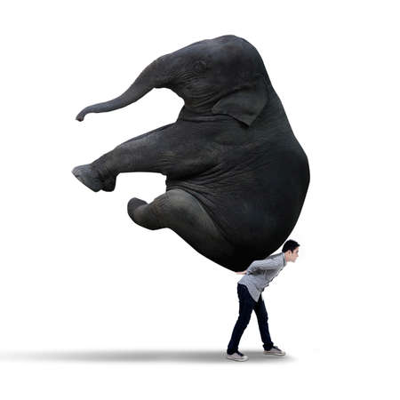 Young businessman carrying heavy elephant - isolated on white