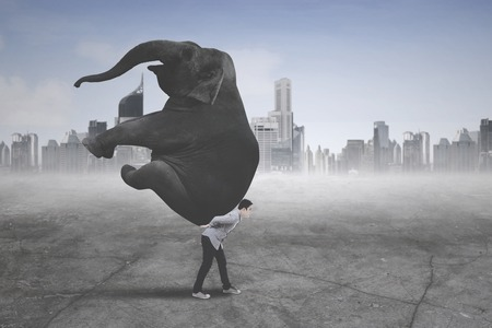 Photo pour Picture of young businessman wearing casual clothes while carrying an elephant with modern city background - image libre de droit