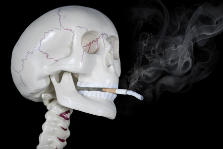 Photo for Close up of a human head skeleton smoking a cigarette. Shot with dark background - Royalty Free Image