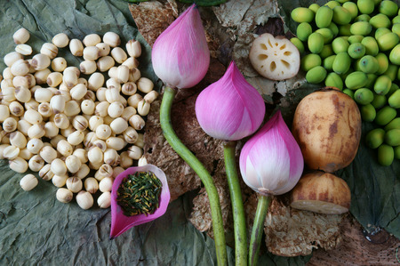 Photo pour Collection of lotus, pink lotus flower, green seed, white lotus seed in fresh and dry, herbal tea of this flora, with amazing, abstract concept in vibrant color, this food make healthy , good sleep - image libre de droit
