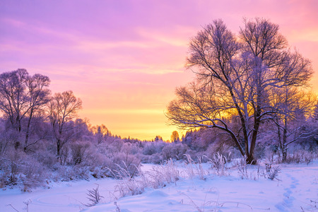 Foto de beautiful winter landscape with sunset and the  forest - Imagen libre de derechos