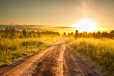 Foto de the summer rural landscape with sunrise  and the road - Imagen libre de derechos