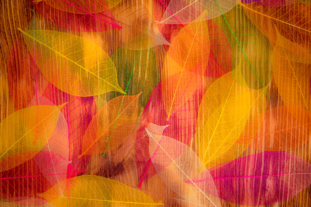 Foto de Autumn leaves texture. Abstract background - Imagen libre de derechos