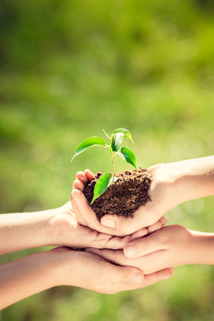 Foto de Children holding young plant in hands against green spring background. Earth day ecology holiday concept - Imagen libre de derechos