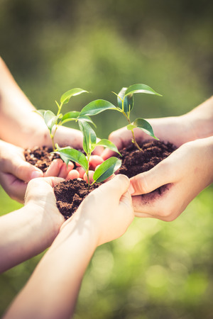 Foto de People holding young plant in hands against green spring background. Earth day ecology holiday concept - Imagen libre de derechos
