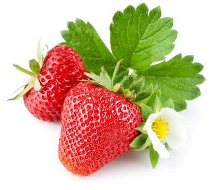Foto de strawberry berry with green leaf and flower isolated on white background - Imagen libre de derechos