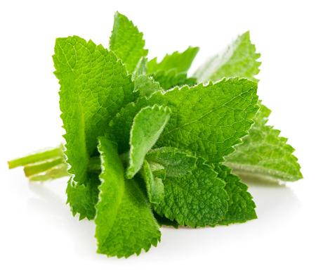 Photo for Fresh leaf mint. Isolated on white background - Royalty Free Image