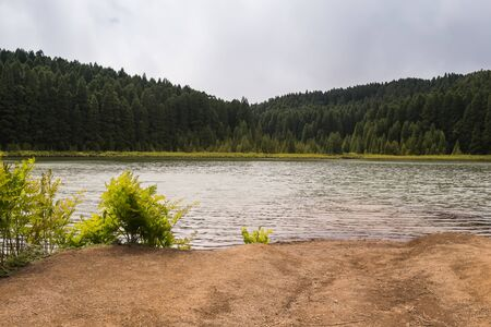 Photo for Lake Lagoa do Canario, surrounded by wood. Bright green bushes on the shore. Cloudy spring sky. Sao Miguel, Azores Islands, Portugal. - Royalty Free Image