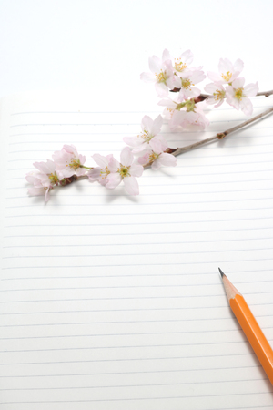 Cherry blossoms and writing utensils on the notebook.