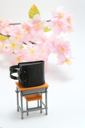 Schoolchild's rucksacks and cherry blossoms on white background. Black randoseru. Entrance ceremony concept.