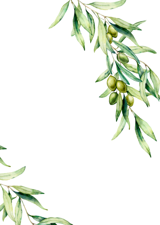 Foto de Watercolor card with olive tree branch, green olives and leaves. Hand painted floral illustration isolated on white background. Botanical illustration for design, print. Greeting template for design. - Imagen libre de derechos