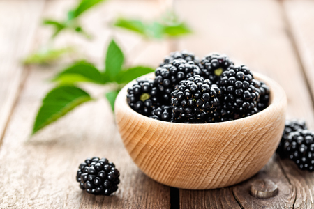 Photo for blackberry - Royalty Free Image