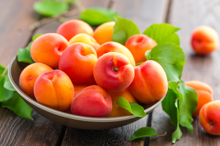 Photo for Apricots - Royalty Free Image