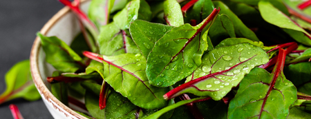 Foto de Fresh chard leaves on black background. Banner - Imagen libre de derechos