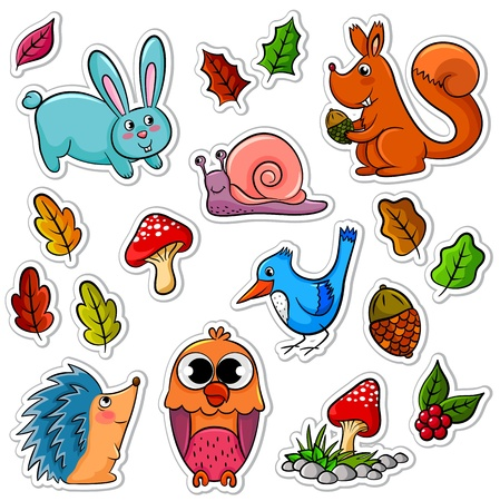 collection of forest animals and plants
