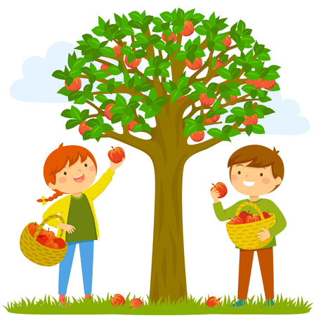 Ilustración de Two kids picking apples from the tree - Imagen libre de derechos