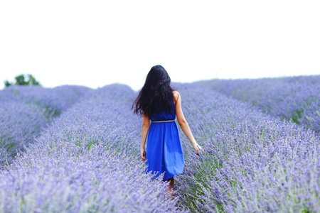 Photo for Woman standing on a lavender field - Royalty Free Image