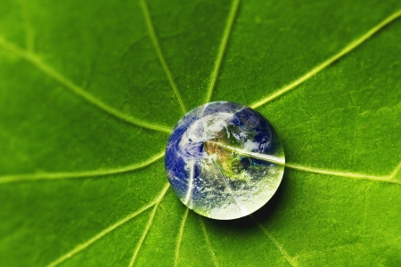 Photo for The world in a drop of water on a leaf  Elements of this image furnished by NASA - Royalty Free Image