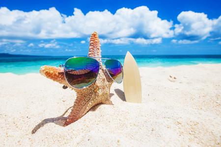Foto de Starfish surfer on sand of tropical beach at Philippines - Imagen libre de derechos
