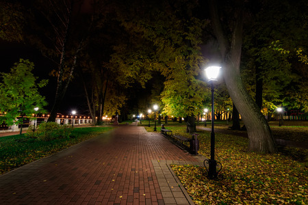 Foto de City night park in autumn with paths strewn with fallen yellow leaves and trees. Landscape. - Imagen libre de derechos