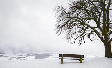 Photo pour Contemplative winter scenery with an aged wooden bench under a big leafless tree surrounded by snow, on a hilltop, while overcast sky, in Germany. - image libre de droit