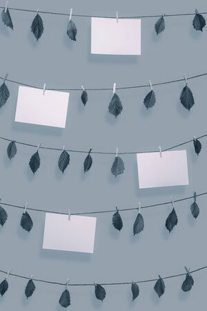 Photo for Blank paper notes and dried leaves hanging on clotheslines with wooden clips. Paper sheet frames in blue monochrome color. Environment concept. Nature - Royalty Free Image