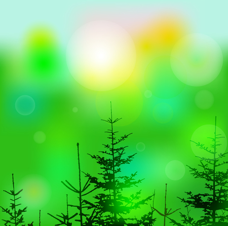 Eco banner with lights and coniferous trees. Can be used as poster, background, backdrop, label of mineral water...