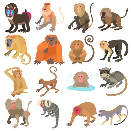 Illustration for Monkeys types icons set. Cartoon illustration of 16 monkeys types vector icons for web - Royalty Free Image