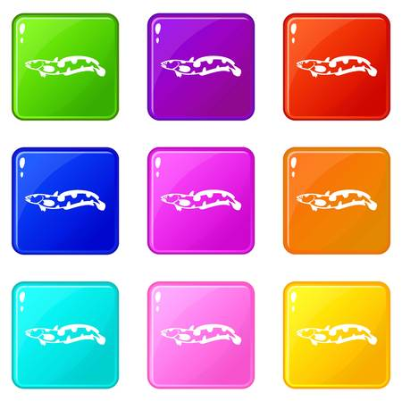 Anarhichas fish icons of 9 color set isolated vector illustration