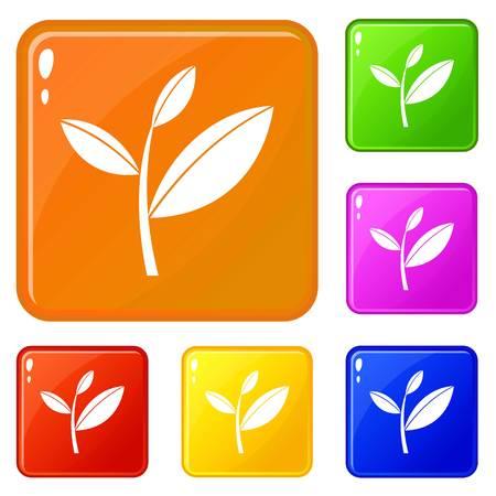 Ilustración de Tea leaf sprout icons set collection vector 6 color isolated on white background - Imagen libre de derechos