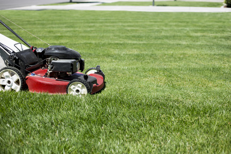 Foto de Mowing the lawn in the front yard beautiful green grass - Imagen libre de derechos