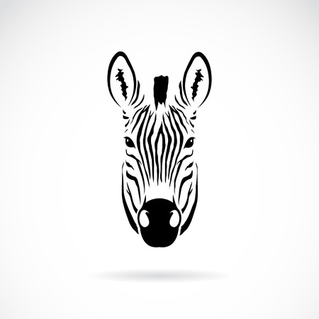 Illustration for Vector image of an zebra head on white background - Royalty Free Image