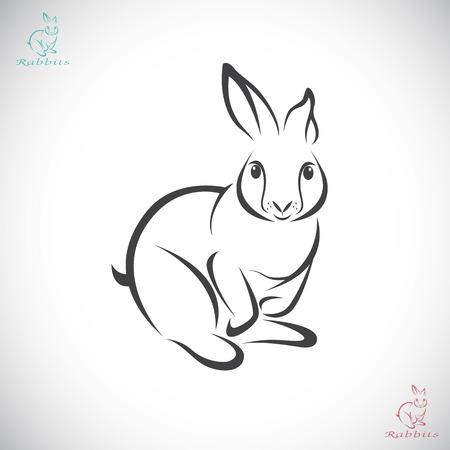 Illustration pour Vector image of an rabbit on white background - image libre de droit
