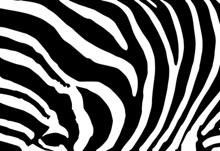 Illustration pour vector abstract skin texture of zebra print pattern - image libre de droit