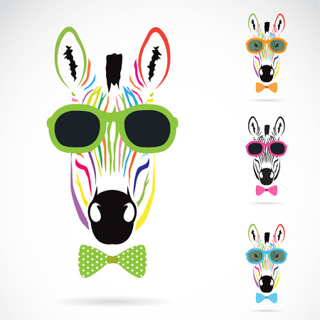 Illustration for Vector image of a zebra wear glasses on white background. - Royalty Free Image